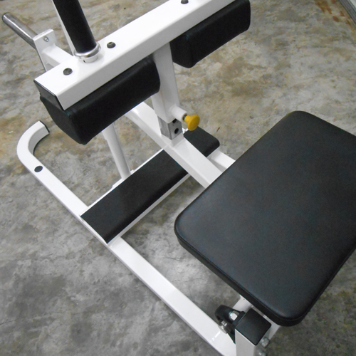 cybex calf machine