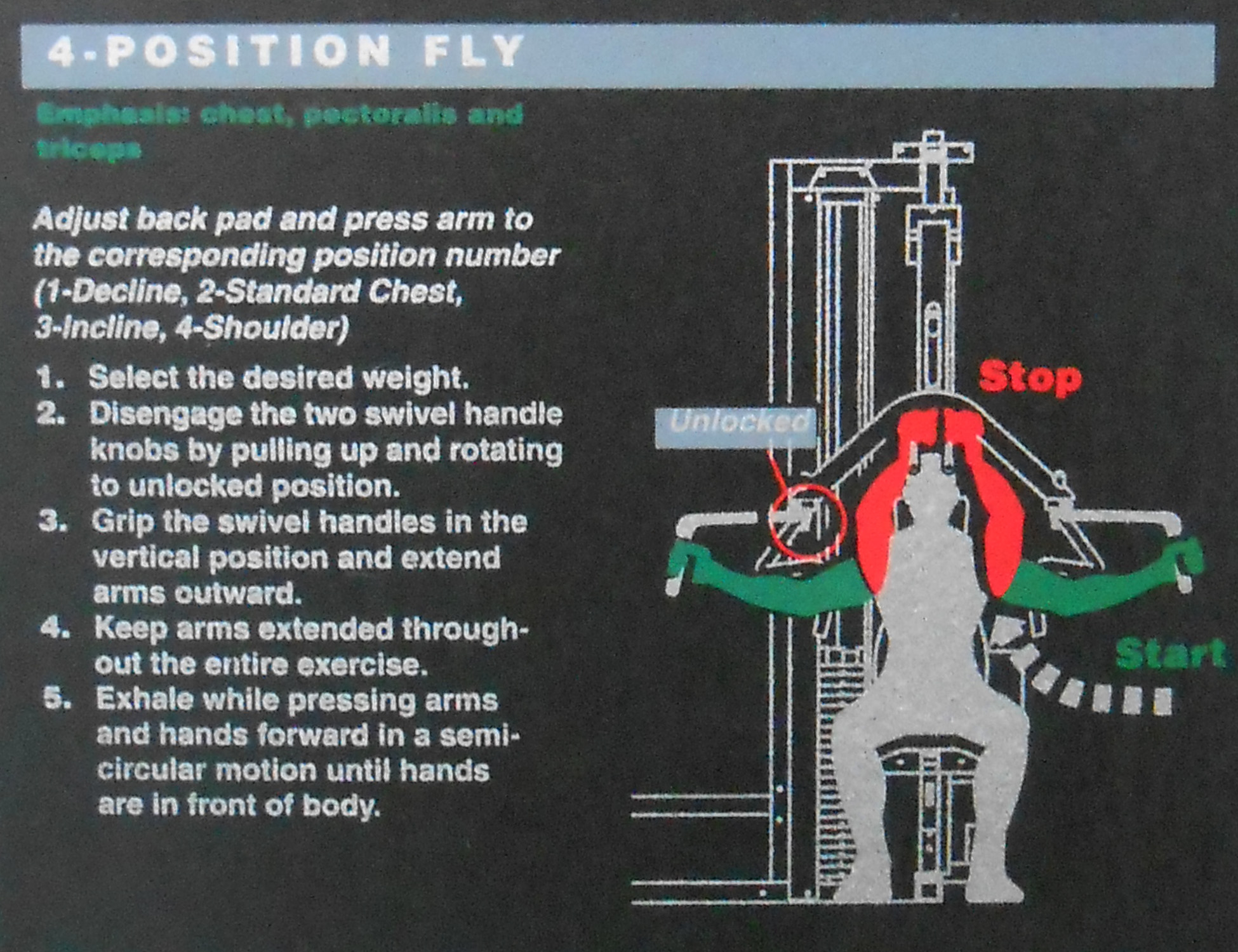 4-Position Fly