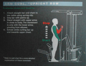 Arm Curl, Upright Row